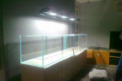 Nasze akwarium